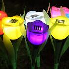 Hot Outdoor Yard Garden Path Way Solar Power LED Tulip Lands